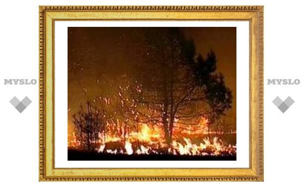 Под Тулой горят дома