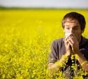 На Яндекс.Погоде появилась карта пыльцы для аллергиков Тулы