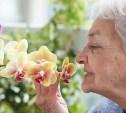 «Нюхательный тест» позволяет выявлять болезнь Альцгеймера