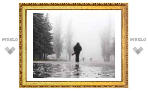9 Мая в Туле: весь день дождь