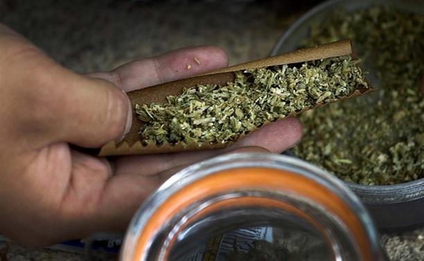 Жителя Суворова посадили за хранение 1,5 кг марихуаны