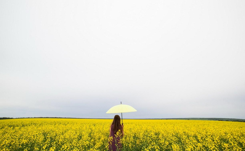 Погода в Туле 17 июля: синоптики обещают +29°С и грозы
