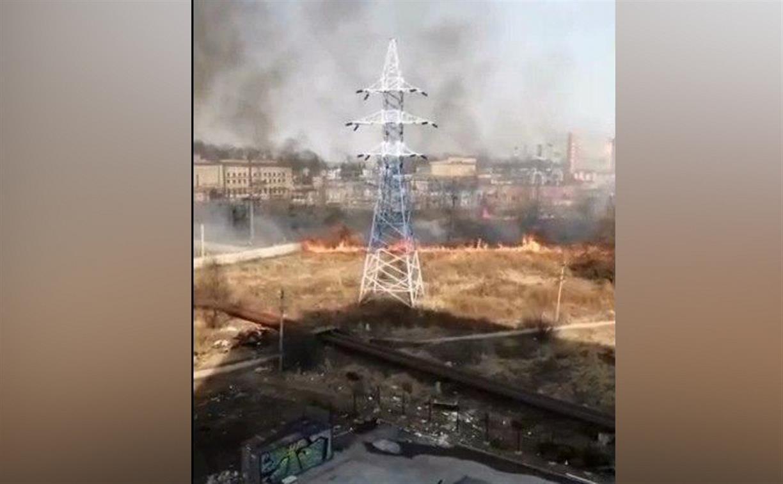 Трубы горят: в Щегловской засеке огонь с горящих полей перекинулся на теплотрассу