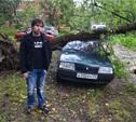 На Красном перекопе на автомобиль упало дерево