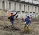 В субботнике 18 апреля приняли участие почти 19 тысяч туляков