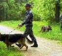 Полиция Киреевска разыскивает без вести пропавшую Елену Ролдугину