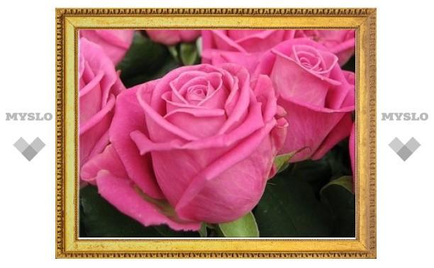 В Санкт-Петербург прислали розы с кокаином
