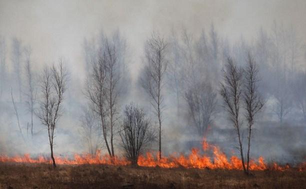 В Тульской области введен особый противопожарный режим