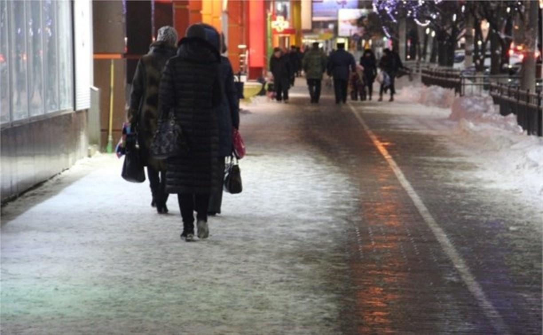 Противогололёдными реагентами будут обрабатывать только центральные улицы Тулы