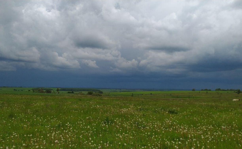 Погода в Туле 12 июня: жара и дождь с грозой