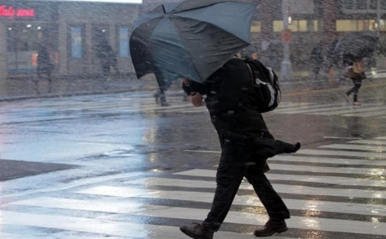 Метеопредупреждение: в Тульской области ожидается порывистый ветер