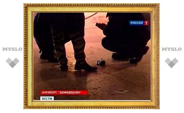МЧС опубликовало имена всех погибших при теракте в Домодедово