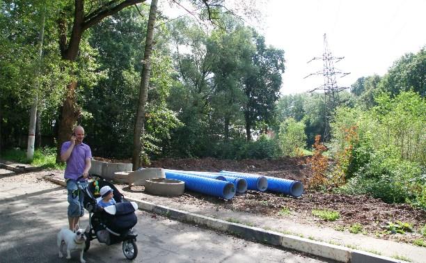 Что хотят построить в Платоновском парке?