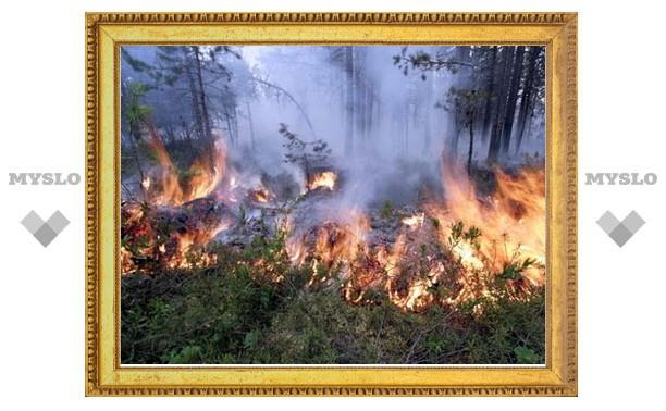 В Тульской области зафиксировано 17 пожаров