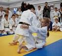 В Туле пройдёт турнир по дзюдо на призы губернатора Тульской области Владимира Груздева