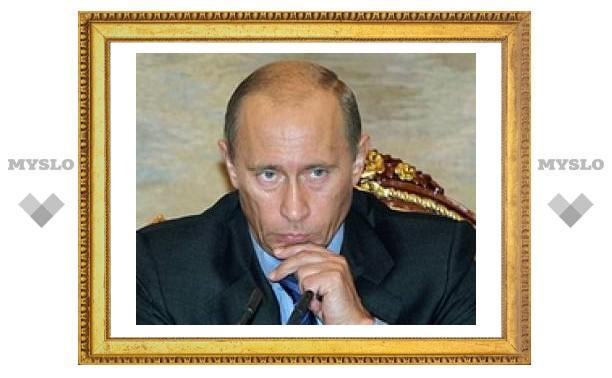 Путин оценил планы тульских властей