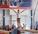 Шестеро туляков получили звания мастеров спорта России