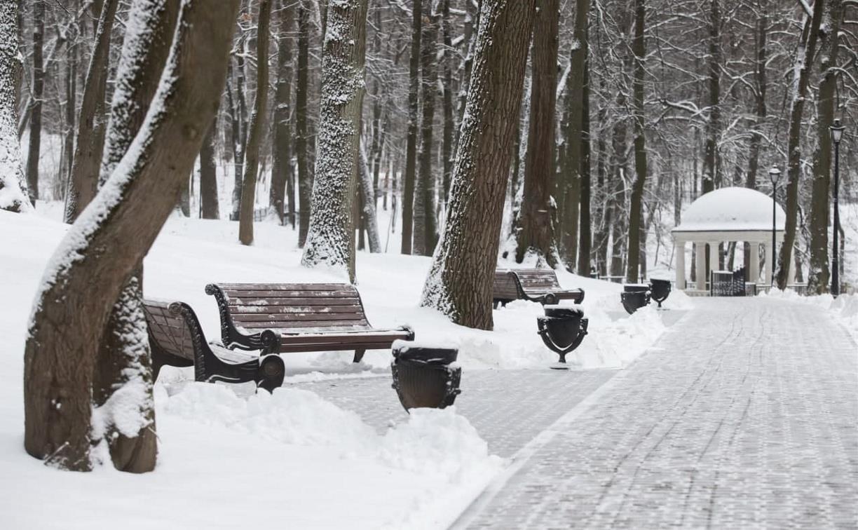 Погода в Туле 9 марта: небольшой снег и до -11