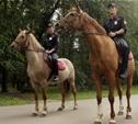 Обеспечивать порядок в Центральном парке будет конная полиция