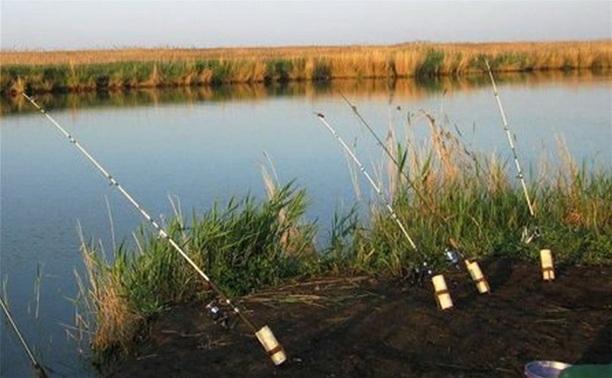 В Алексине проводится чемпионат Тульской области по ловле донной удочкой