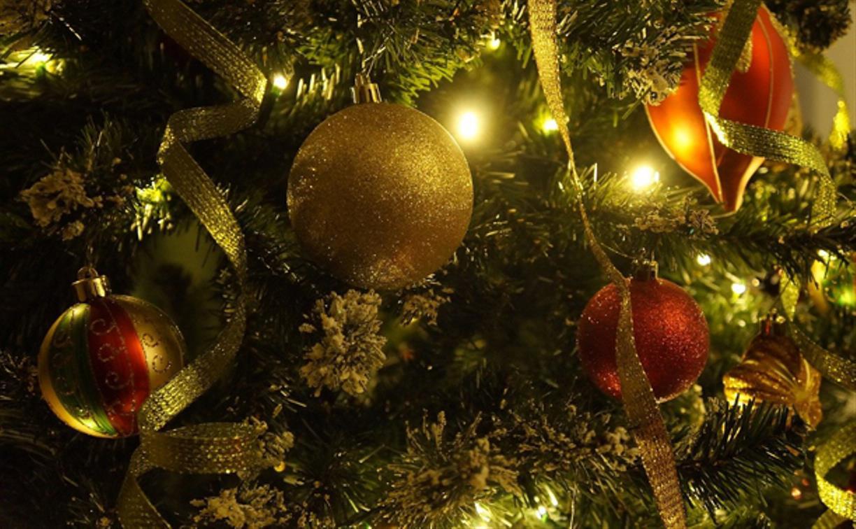 Официальные лица поздравляют туляков с Новым годом