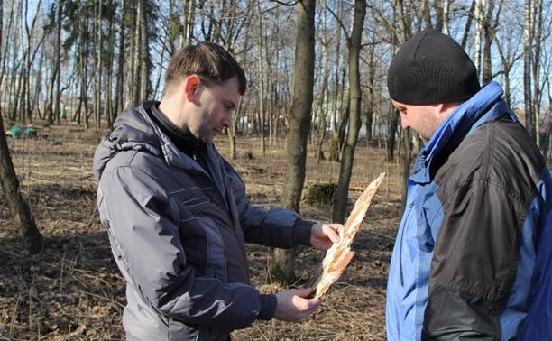 Жуки-короеды напали на деревья в Горелках