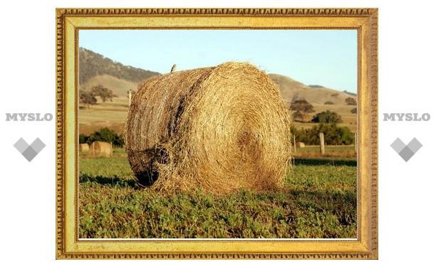 Под Тулой грабитель чуть не украл 280 кг сена