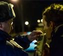 За выходные в Туле полицейские поймали 12 пьяных водителей