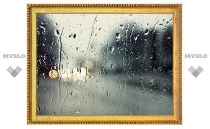 Туляков ждут теплые дождливые выходные