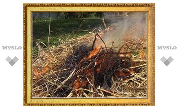 Под Тулой сгорело 200 тонн сена