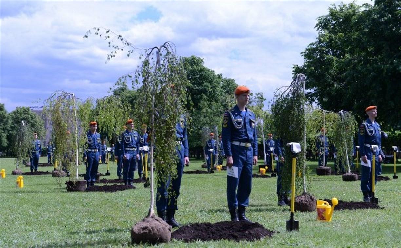 Туляки поучаствовали в высадке деревьев в «Березовой роще Героев»