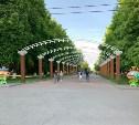 В Центральном парке Тулы появятся арки с подсветкой