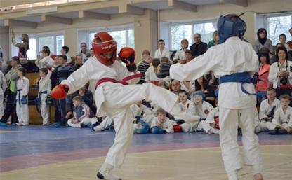 Тульские мальчишки отличились на турнире по рукопашному бою