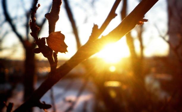 К концу недели в Туле потеплеет до +10