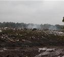 На месте бывшей свалки на Косой Горе посадят деревья