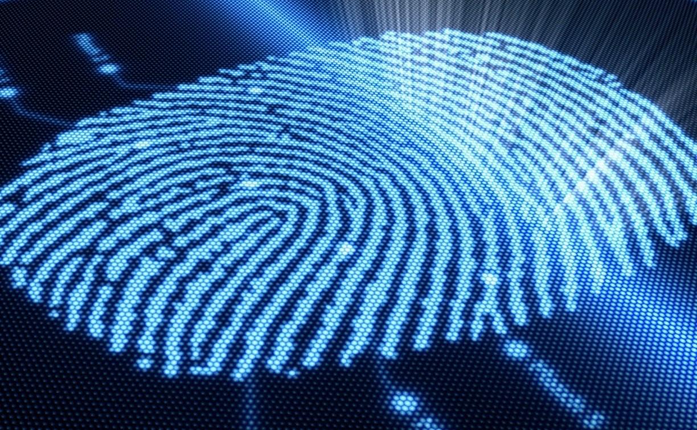 В «Дикси» трудовую дисциплину контролируют по отпечаткам пальцев сотрудников
