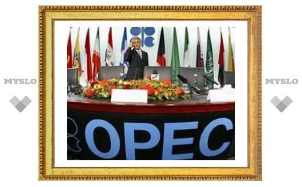 ОПЕК гарантирует стабильность на мировом рынке нефти