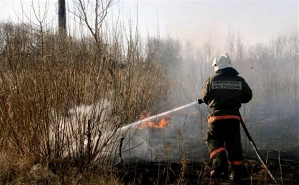 17 и 18 апреля тульские спасатели 30 раз выезжали на тушение травы и мусора