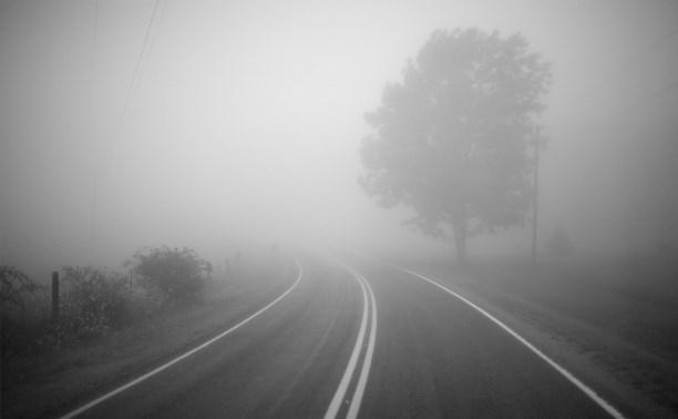Туляков предупреждают о тумане на дорогах региона