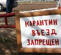 В Тульской области два населенных пункта закрыли на карантин из-за африканской чумы