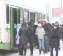 Тулякам приходится по 1,5 часа на холоде ждать автобус №25