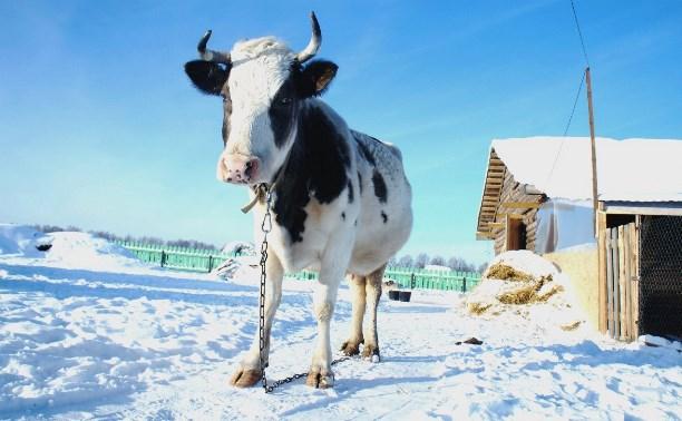В «Велегож парке» решат, как повысить качество жизни в Заокском районе