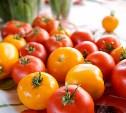 Сентябрь за городом: календарь садовых работ