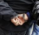 18-летний мошенник из Новомосковска под видом покупателя угнал у пенсионера «Оку» и попал в ДТП