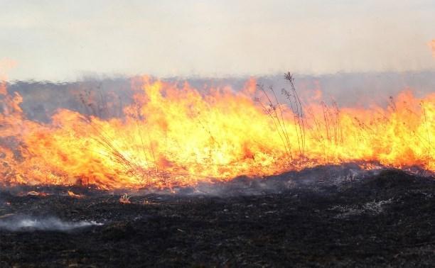 Житель Тульской области пострадал при сжигании травы