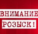 Следователи ищут очевидцев смертельного ДТП в Ясногорском районе