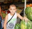 1 июля в Туле заработают бахчевые развалы