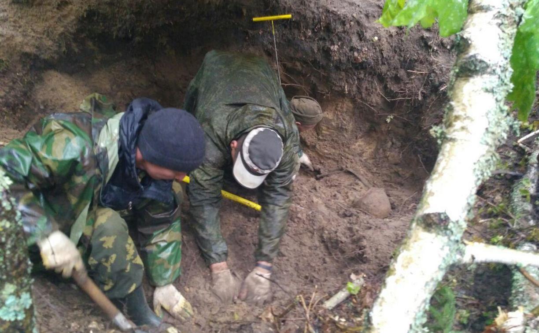 В Тульской области в лесу поисковики нашли захоронение артиллеристов и лошадей