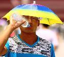 Погода в Туле 18 июня: сухо, облачно и жарко
