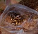 В Тульской области полицейские изъяли крупную партию наркотиков